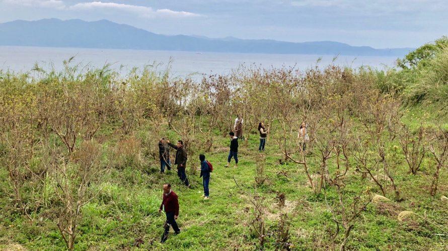 桜自然塾の視察旅行に参加(4):鹿児島県指宿市
