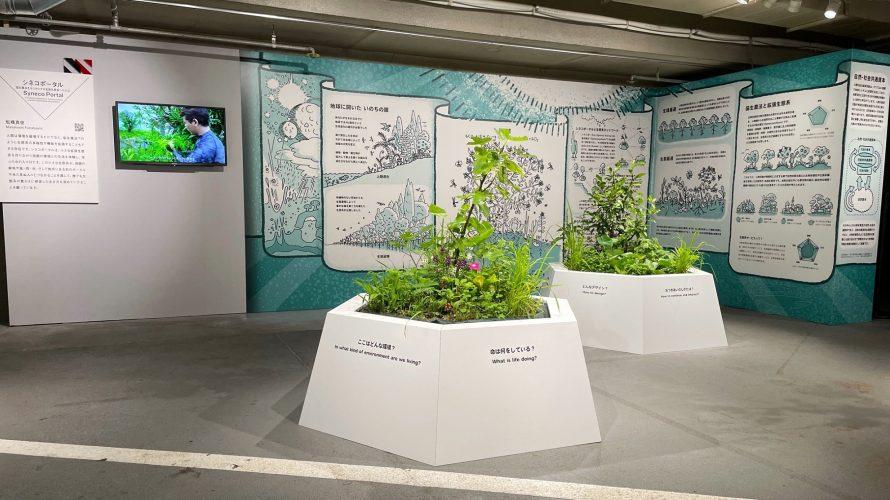 """銀座ソニーパーク展""""人類の未来の研究""""の拡張生態系展示に協力"""